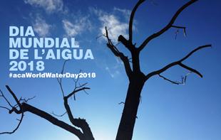 CONCURS DIA MUNDIAL DE L'AIGUA 2018