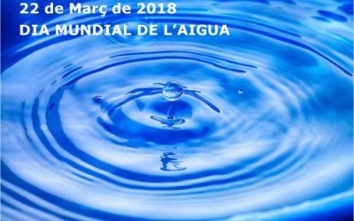 22 de març – DIA MUNDIAL DE L'AIGUA