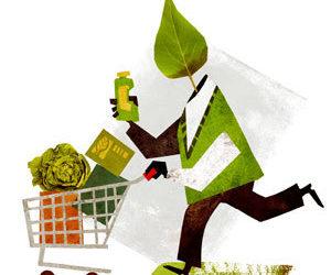 Ideas per treballar el consum sostenible en el marc del Dia sense compres (30N)